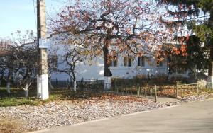 BAT Targoviste - Pavilion administrativ