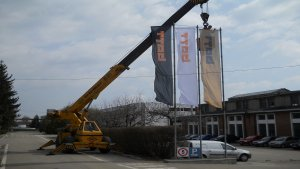 BAT Targoviste - Inlocuire steaguri vechi